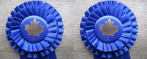 blue ribbons with maple leaves in centre