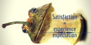 """an eatten apple that has frog skin and head, with equation """"satisfaction = experience / expectation"""""""